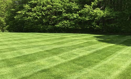 Large lawn in Conneaut that was recently mowed by our team.